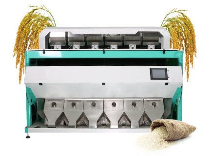 2 channels rice color sorter machine