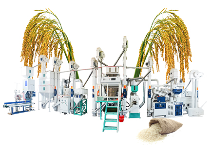 25T/D Modern Design Rice Mill Plant