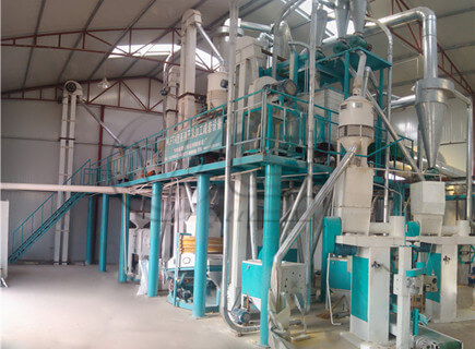 30TPD maize mill plant for sale