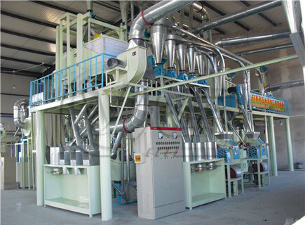 50TPD maize processing machines