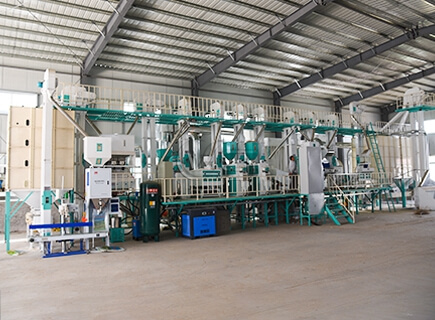 60tpd rice processing plant