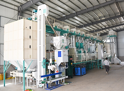 60tpd rice milling plants cost