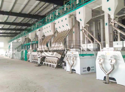 rice milling project for sale