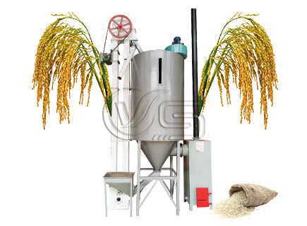 grain dryer for rice mill plant