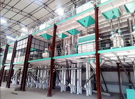 200T rice mill plant manufacturer