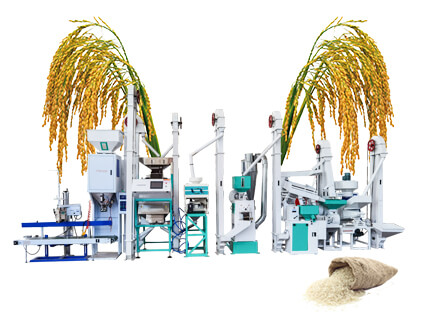15TPD Modern Design Rice Mill Plant